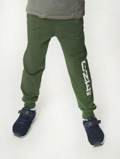 """Wanex Спортивные штаны для мальчика зелёные """"One Wax"""""""