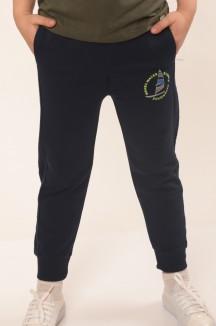 Wanex Спортивные штаны для мальчика синие с принтом