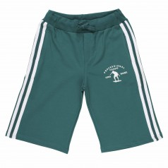 Шорты для мальчика зеленые с белыми плосками