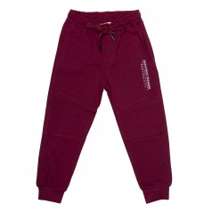 Wanex Спортивные штаны для мальчика бордовые с начёсом