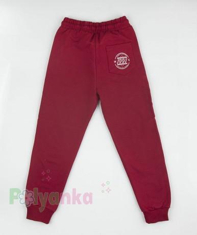Wanex Спортивные штаны детские бордовые - Картинка 5