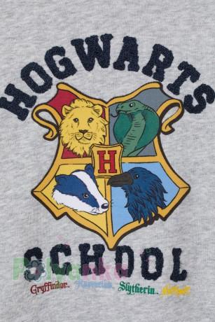 "H&M Худи для мальчика ""Harry Potter"" серый  - Картинка 2"