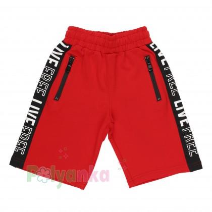 Wanex Комплект для мальчика серая футболка со скейтом и красные шорты - Картинка 4