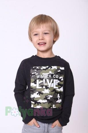 Wanex Футболка с длинным рукавом для мальчика серая с принтом милитари - Картинка 1