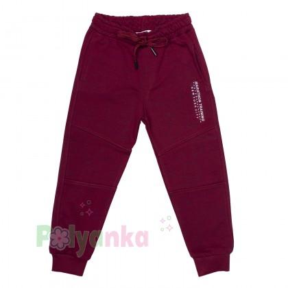 Wanex Спортивные штаны для мальчика бордовые с начёсом - Картинка 1